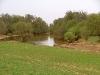 bit-of-green-in-creek-003