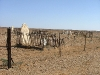 cemetery-chad-loader-014