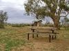 farina-camp-ground-007
